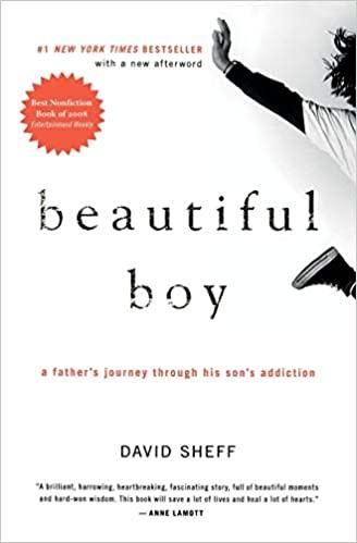 BJ Knapp author of Beside the Music enjoyed Beautiful boy by David Sheff