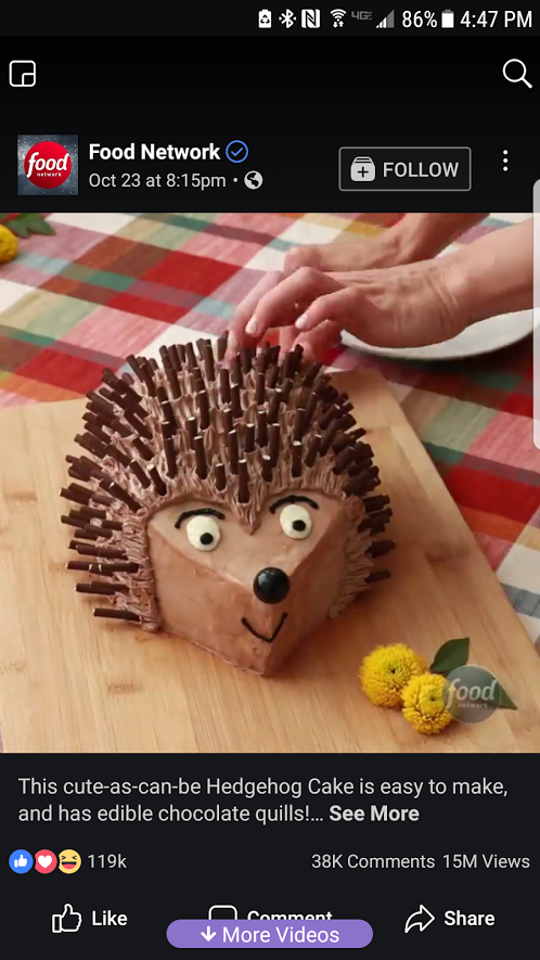 BJ Knapp author of Beside the Music tried to make a hedgehog cake. It didn't go so well.