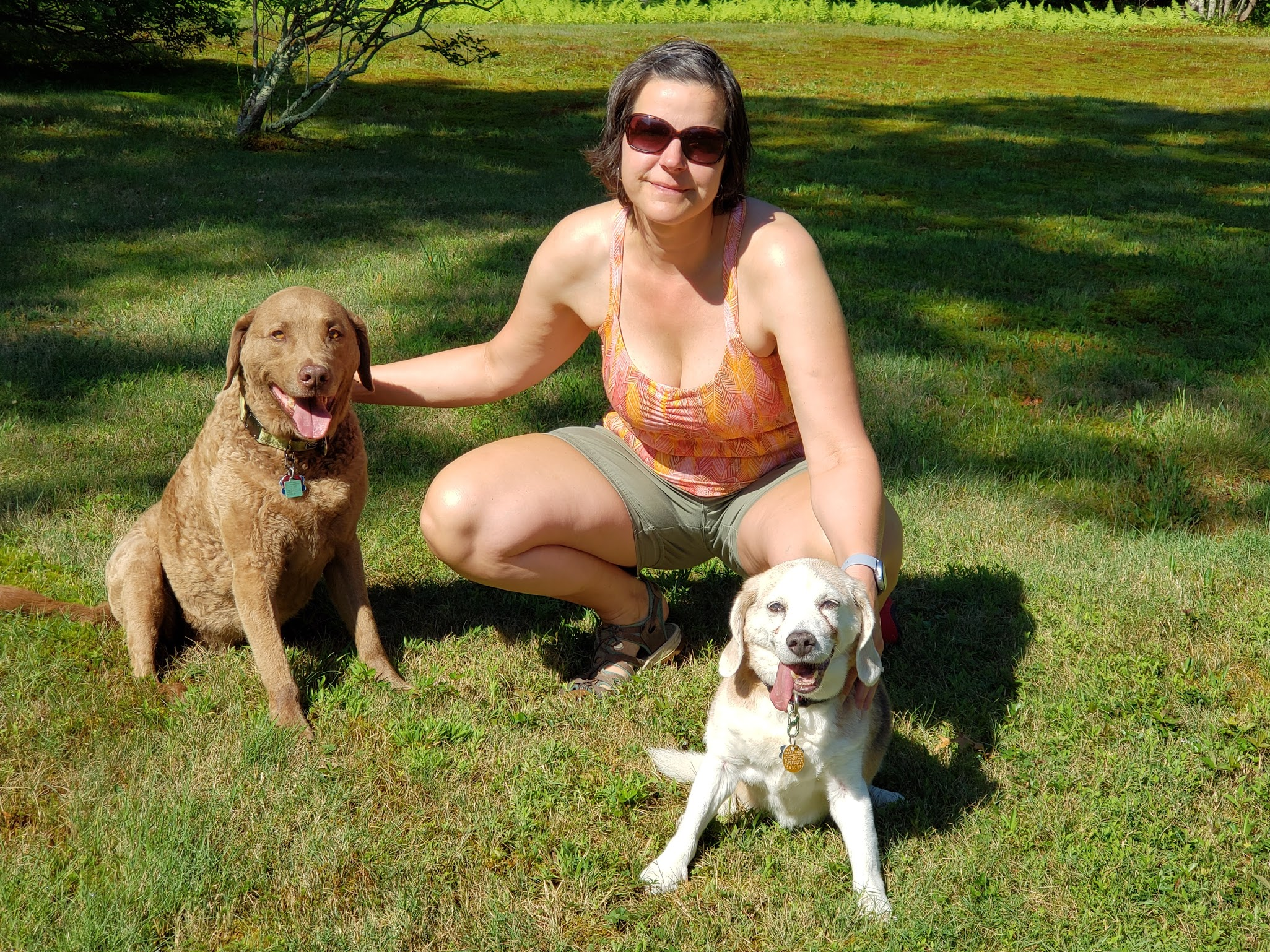 BJ Knapp author of Beside the Music and her beagle Nemo and chesapeake bay retriever Potter