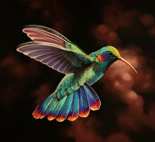 BJ Knapp author of Beside the Music watches hummingbirds